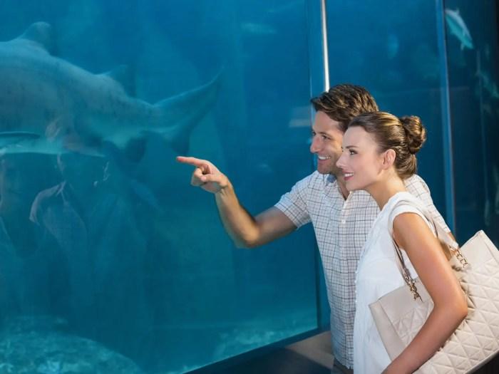 水族館デートを楽しむカップル