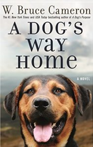 2019's Most Anticipated Book to Movie Adaptations a dog's way home by bruce w. cameron