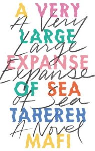 Best Young Adult books a very large expanse of sea by tahereh mafi