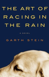 book to movie adaptation 2019 The Art of Racing in the Rain by Garth Stein