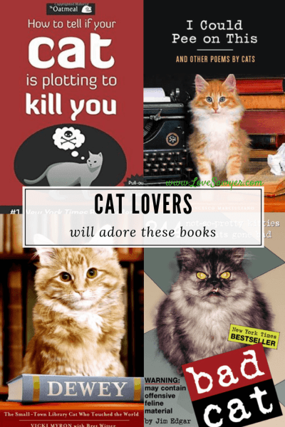 book about cats for cat lovers
