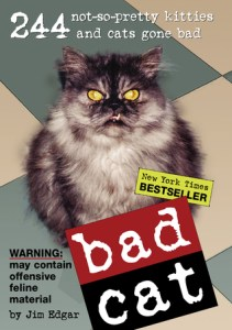 books for cat lovers bad cat by jim eager