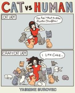Books for cat lovers cat vs. human by yasmine surovec