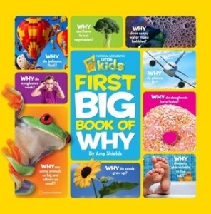 Books for 5 year olds: National Geographic Kids First Big Book of Why