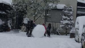 20160124125710fd4s 1 - 九州で超雪だるま制作!