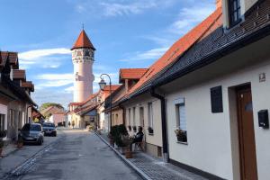 Брежице Словения