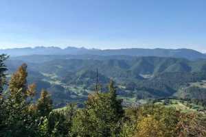 Лимбарска гора Словения