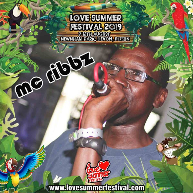 Love Summer Festival | Devon | Family Fun | Glamping | Festival | Southwest | Techno | Plymouth | MC Ribbz | PL75BN