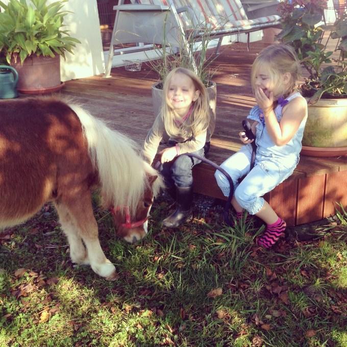 Zaterdagmiddag hadden een etentje met Floris' nieuwe collega's in Duitsland bij iemand thuis. En daar was een meisje van 5 met een klein paardje. Eva heeft zich uiteraard uitstekend vermaakt!