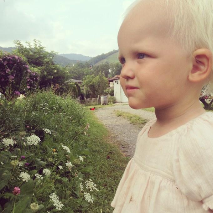 Liza en ik ontdekken bijen en vlinders in de onkruidtuin van de buren. Positief bedoeld, want dit onkruid ziet er gewoon goed uit bij elkaar