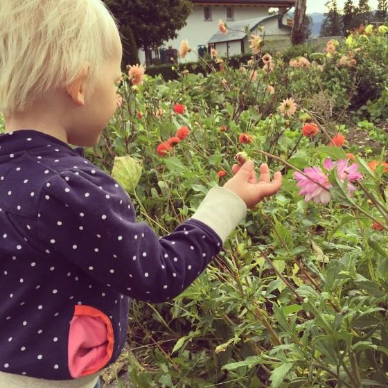 Even bloemetjes ruiken. Hoor je me al roepen? Kijken met de ogen, niet met je handen!