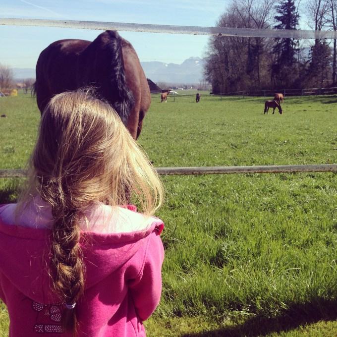 We doen het rustig aan, maar a een sinaspril was Eva weer fit en gaan we naar de speeltuin. Daar stonden ineens ook paarden in de wei. Iedereen weer blij!