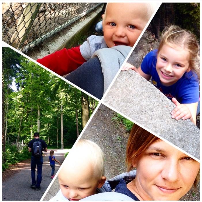 Middags gingen we naar Feldkirch. Een dierenpark met speeltuin.