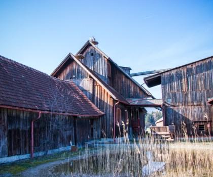 Schollenmühle