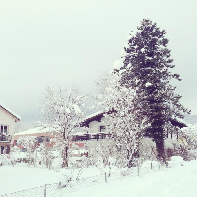Ons huis van de andere kant bekeken. Wat een sneeuw!