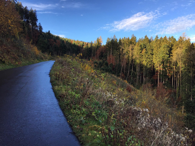 Ik ga weer Nordic Walken met de vrouwen.Mijn Jawbone is inmiddels kwijt, dus die 10.000 stappen zijn weer wat lastiger te maken