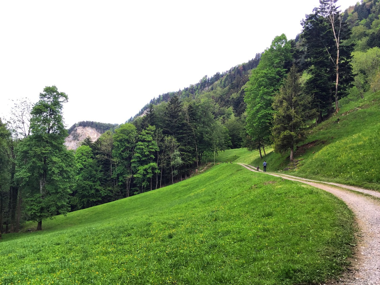 Zwitserland is zo mooi en zo groen