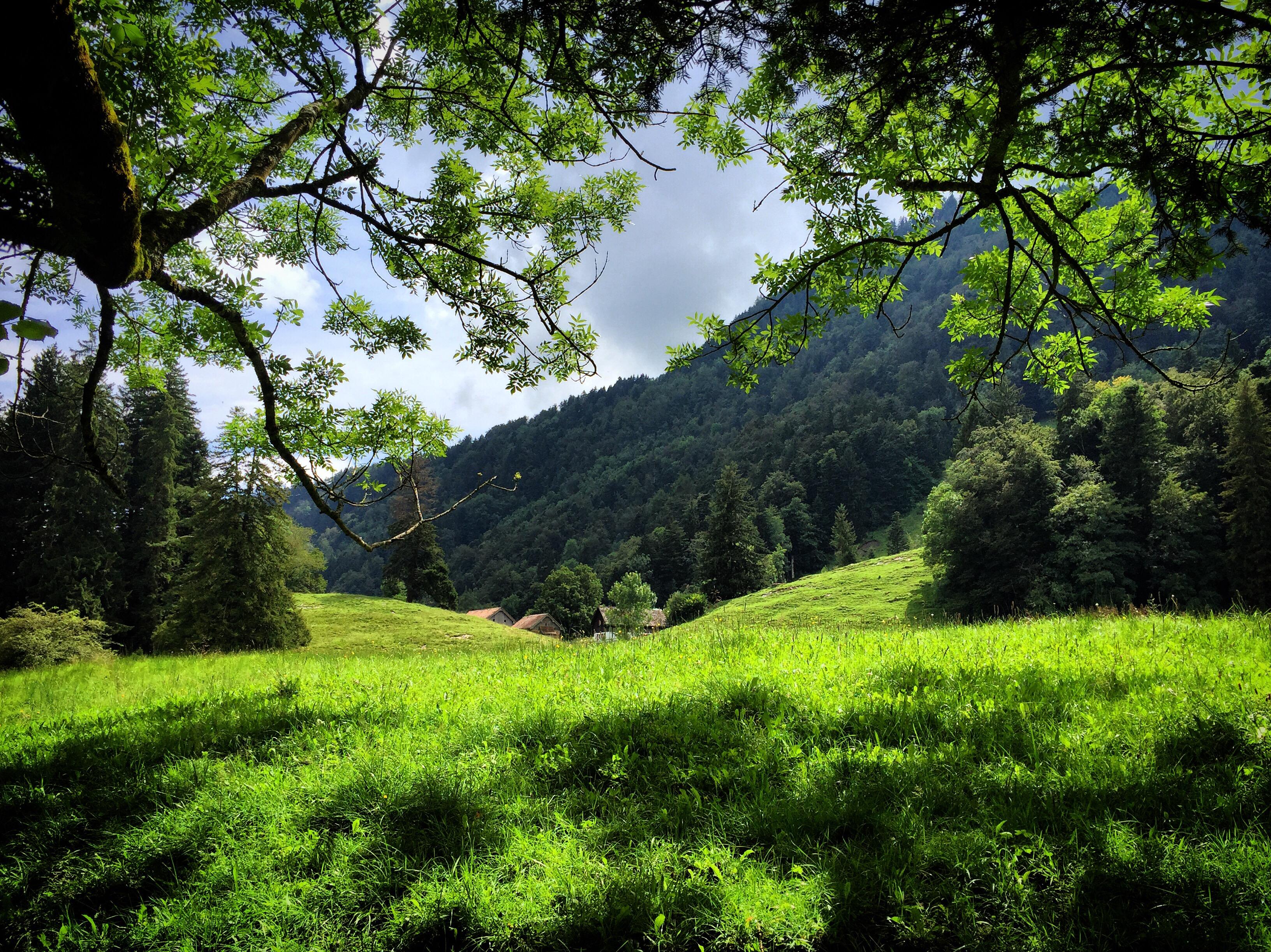 Ik ben zo fan van de Zwitserse uitzichten!