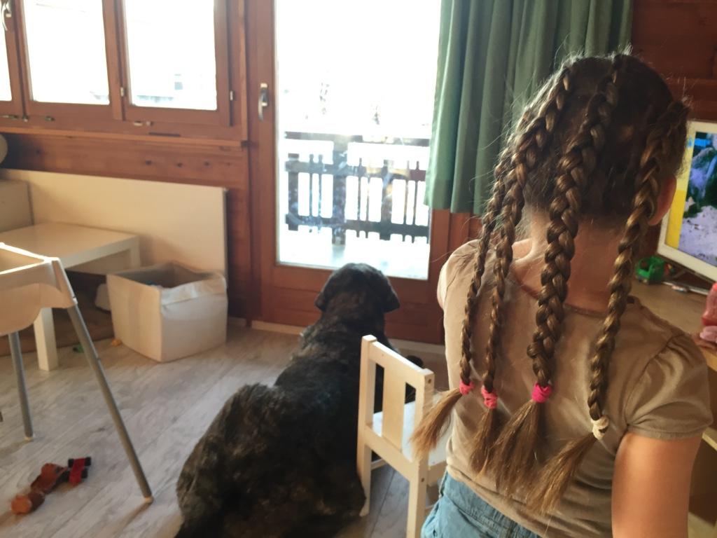 Eva's haren vrijdag