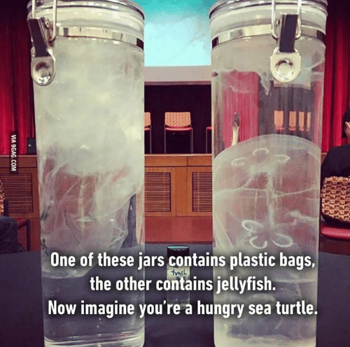 one-of-these-jars-contains-plastic-bags-the-other-contains-6094650.png