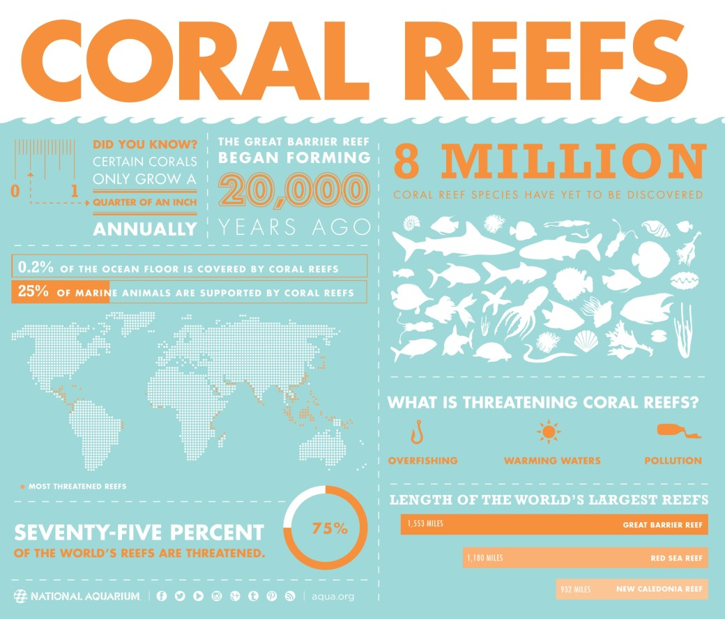 INFOGRAPHIC-Coral Reefs