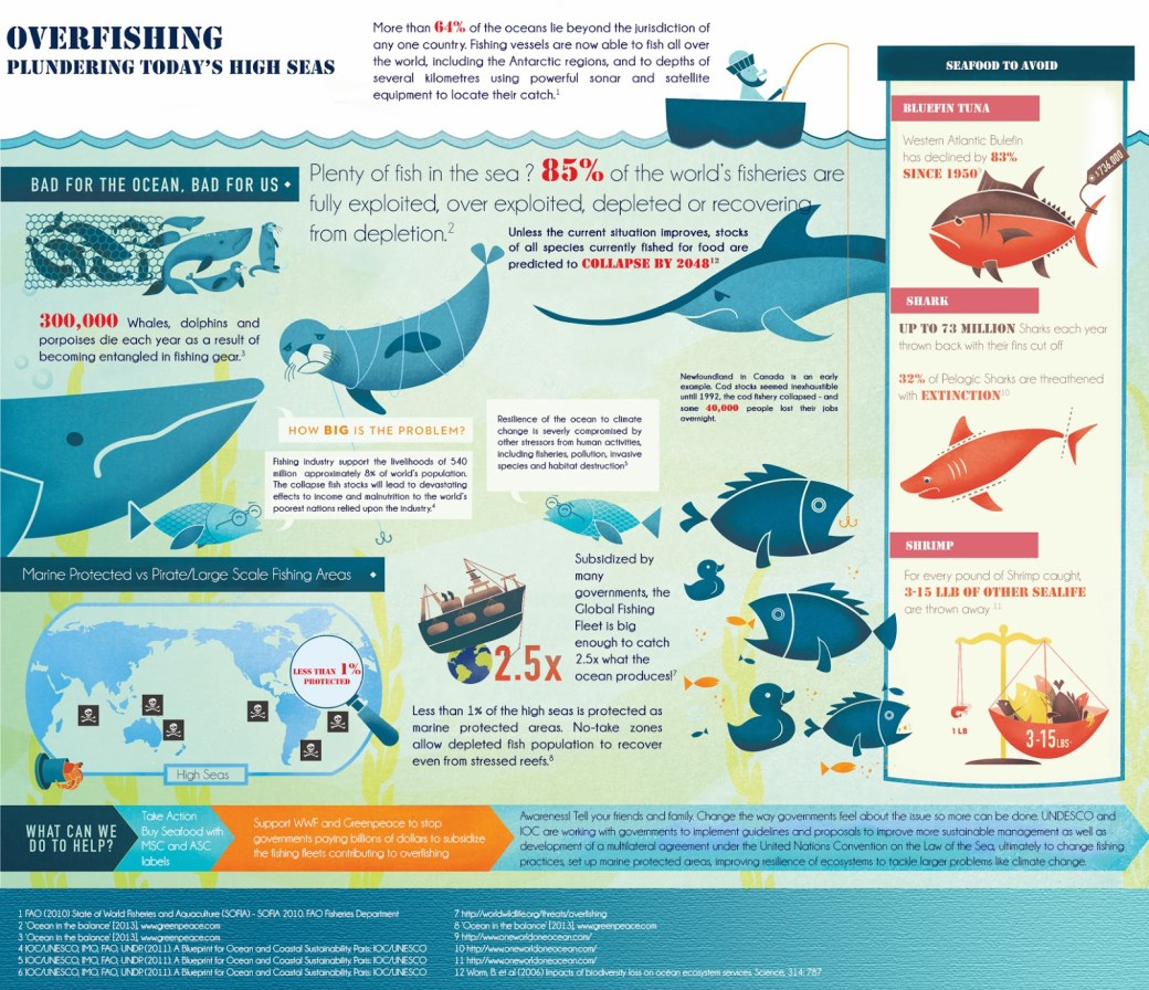 overfishing-infographics
