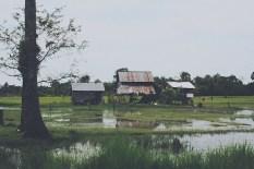 Templos de Camboya