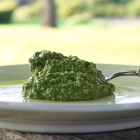 Sorrel pesto on a spoon.