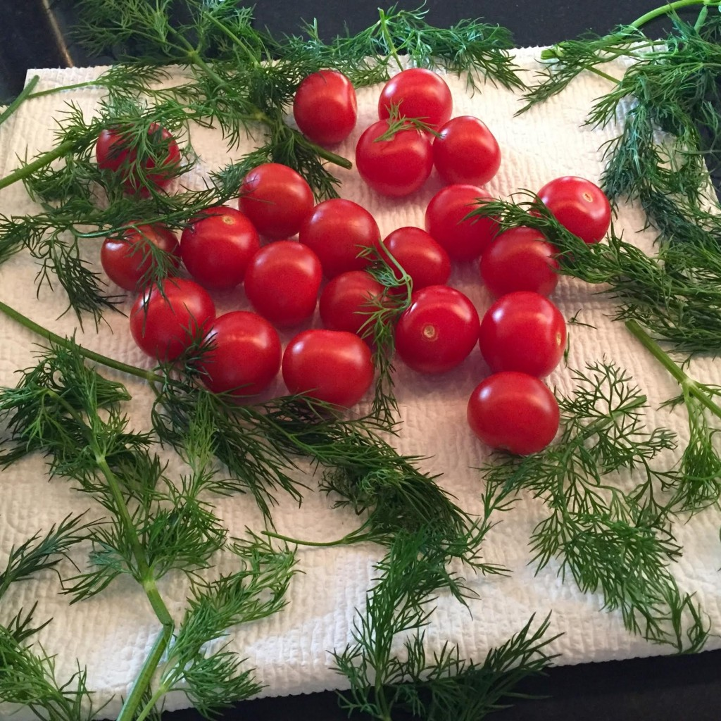 Tomatoes and dill air drying on a white paper towel.
