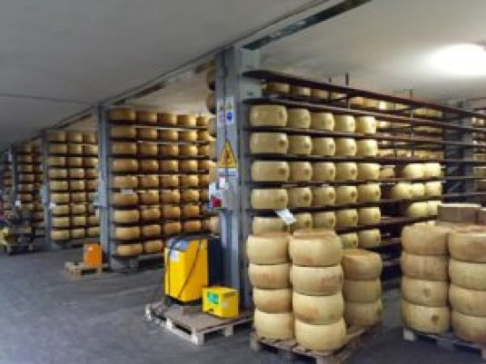 Canti Cheese with huge wheels of Parmigiano.