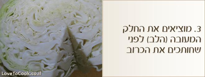 סלט כרוב לבן עם חמוציות