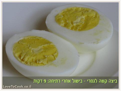 ביצה קשה