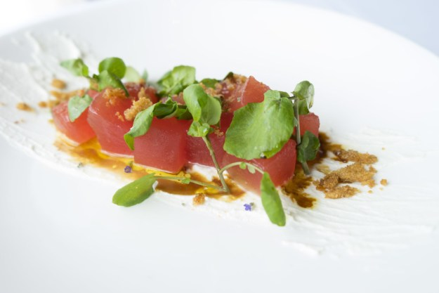 Spring Small Bites - Compressed Watermelon Salad w/Lavendar-infused Honey - photo credit: CLIFT Hotel