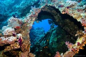 aida-wreck-brothers-islands