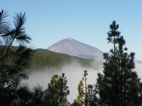Что делать, смотреть, посетить на Тенерифе (часть 1)