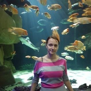 """Аквариум """"Sea Life"""" в """"Mall of America"""""""