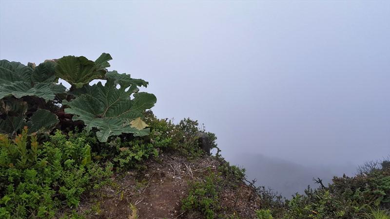 Кратер вулкана Поас