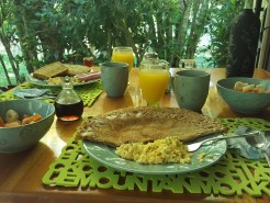 Breakfast in Jardín de los Monos