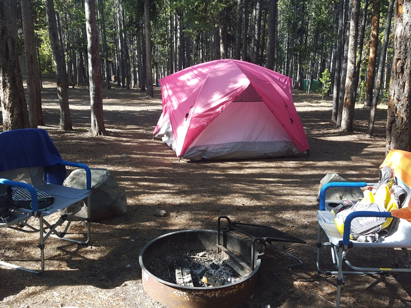 Canyon Campground. Yellowstone