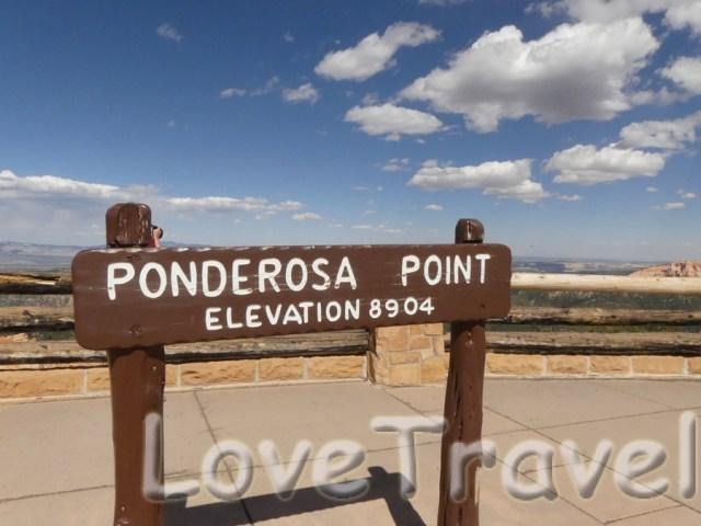 ponderosa-point-2