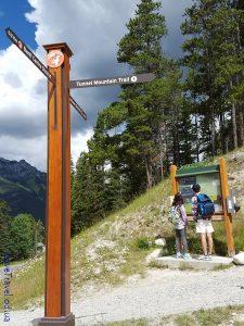 Tunnel Mountain trail (2)