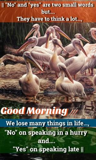 nahi-or-haan-good-morning-status-lovevidstatus.com-254-2