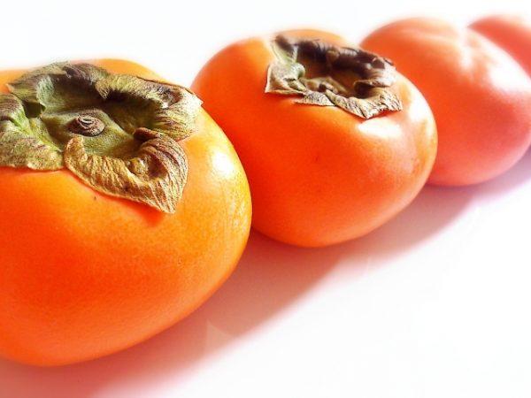 犬 柿 レシピ 簡単