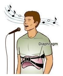 diaphragm2