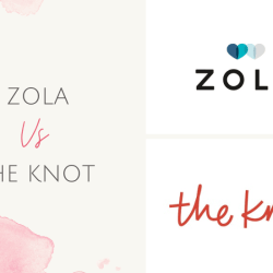 zola vs the knot