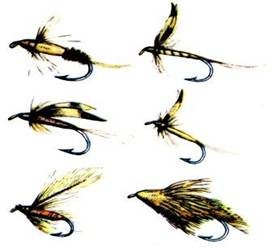 мушки для ловли прудовой форели
