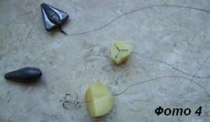 Бойлы на карпа из тыквы