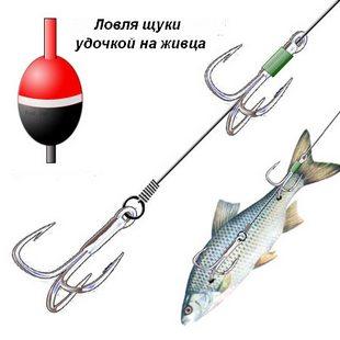 материал поводка для ловли на живца