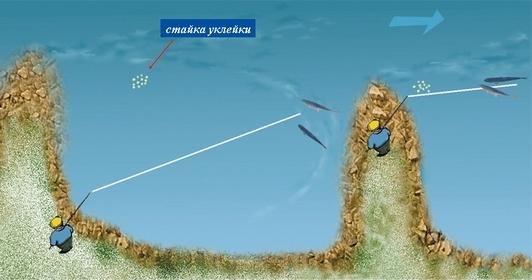 Как ловить жереха