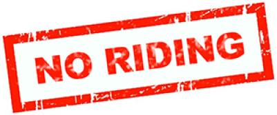 no riding the elephants!